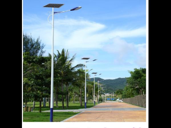 太阳能路灯电池板单晶和多晶哪个好