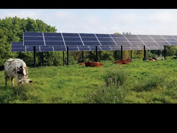 夏季太阳能板遮荫的经济效益