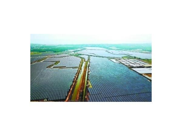 广东湛江 2500亩光伏板群蔚为壮观