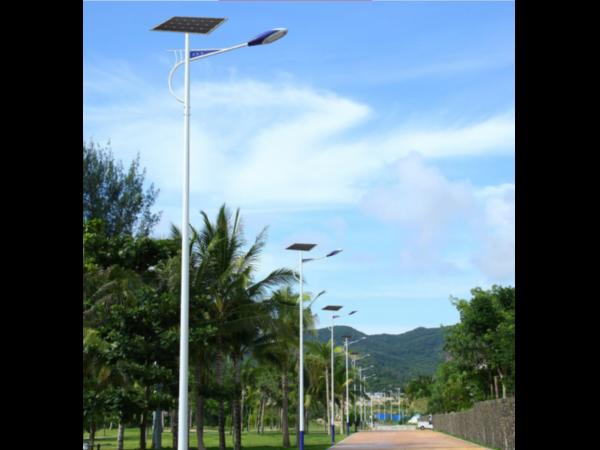路灯和光伏发电站:节能减排新选择!